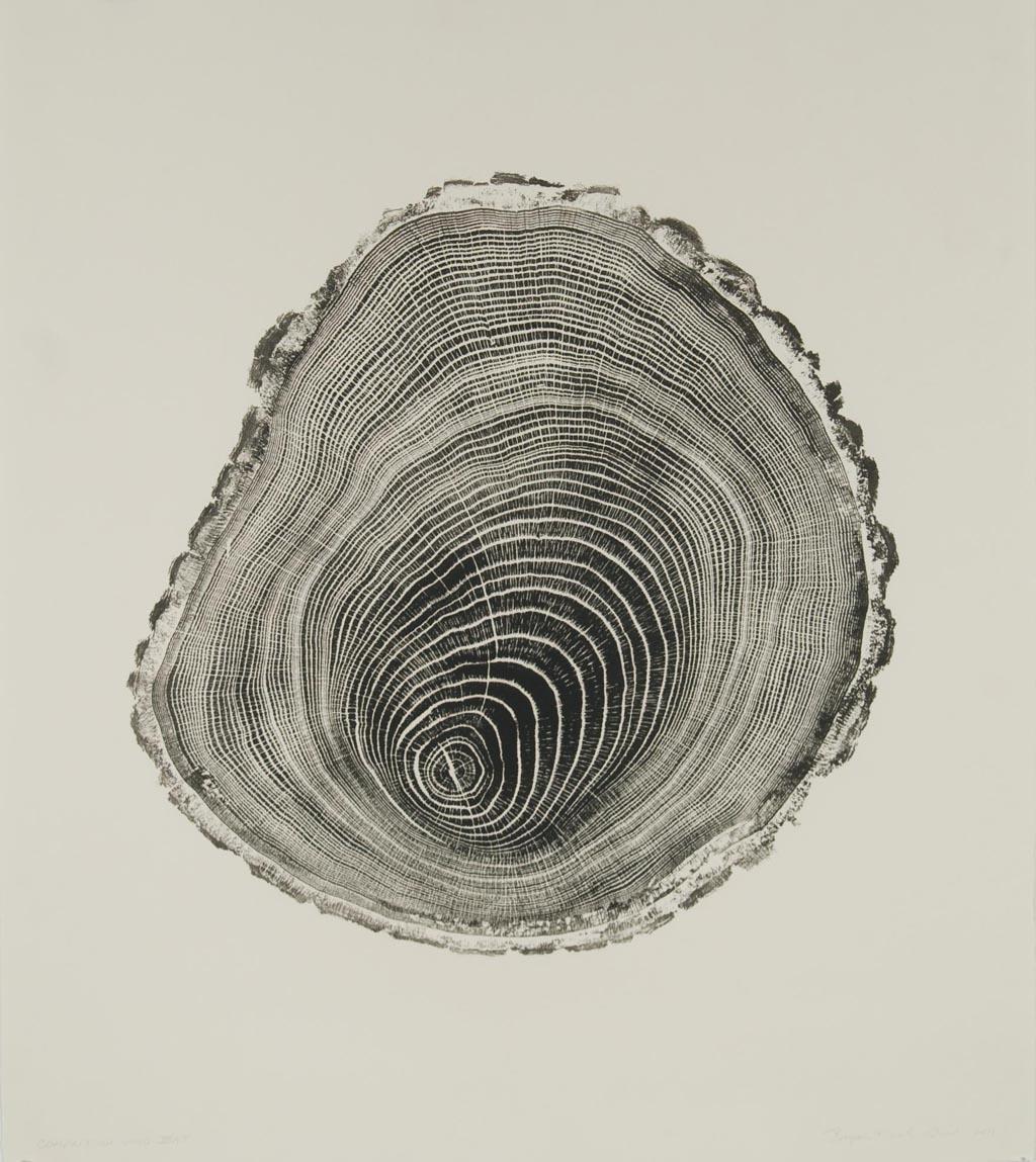 Compression Wood
