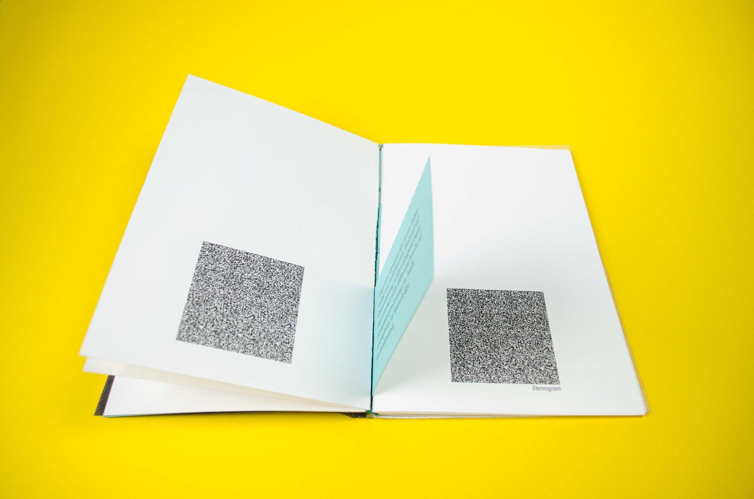 Illusion Zine by Julie Finn