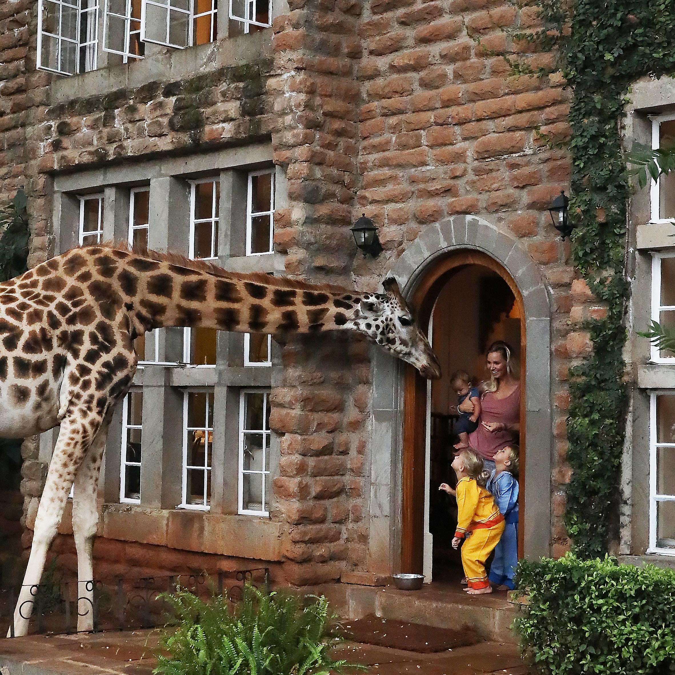 kenya-giraffe-manor-bucket-list.jpg