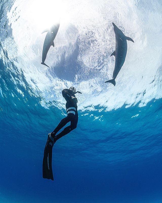 I look up to Garrett. And to dolphins.. 😘😍😘 @thebucketlistfamily