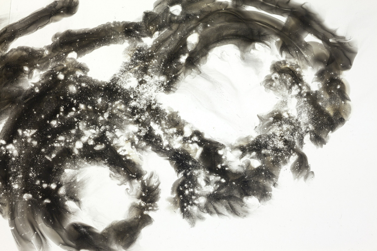 Untitled-4(detail-2).jpg