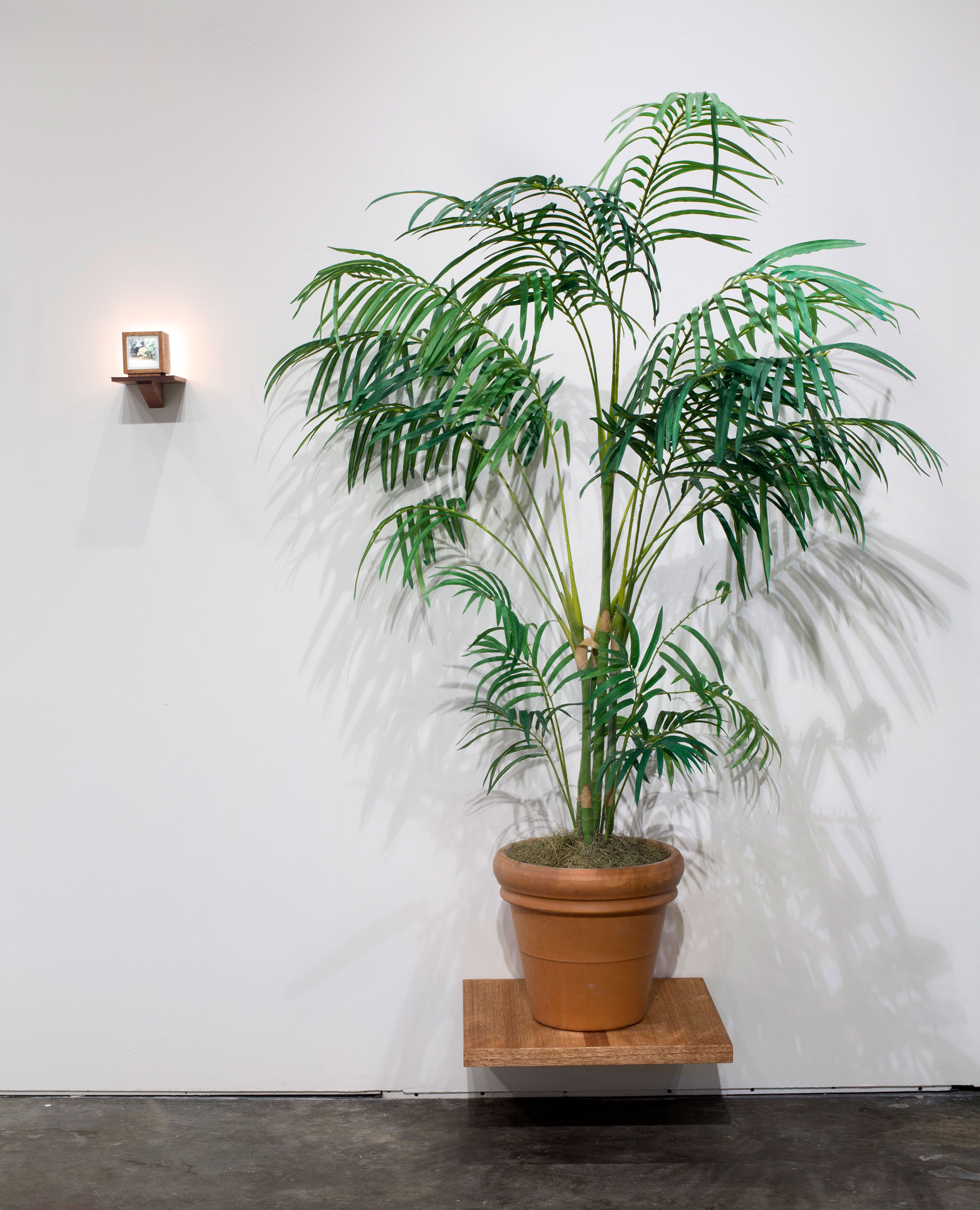 Between-Two-Palms-Front.jpg