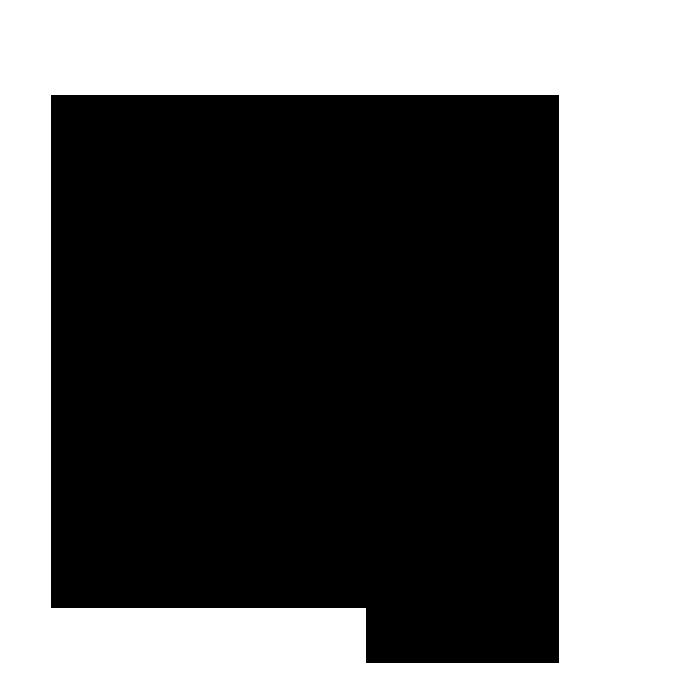 passport-icon