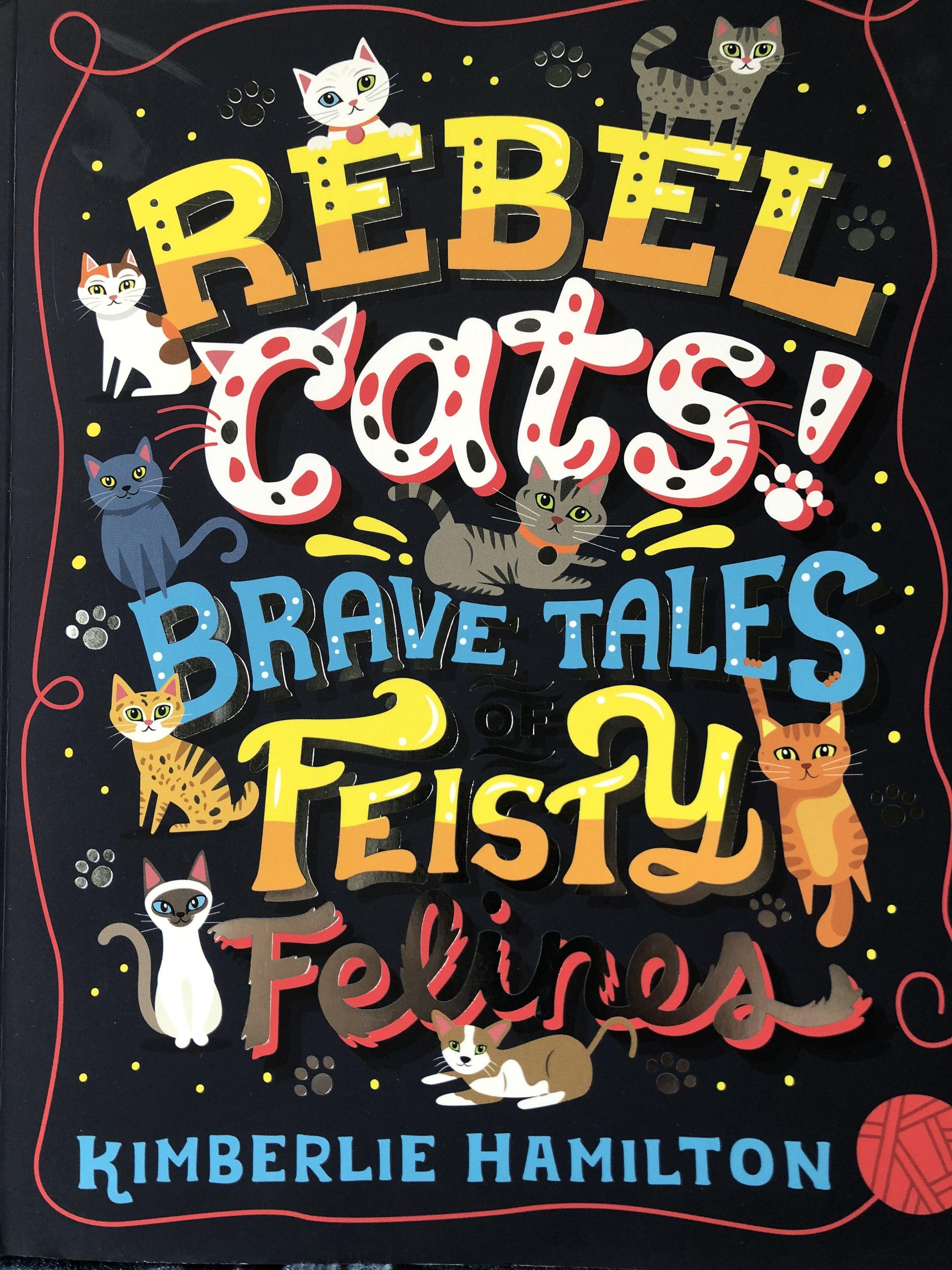 rebel cats.JPG