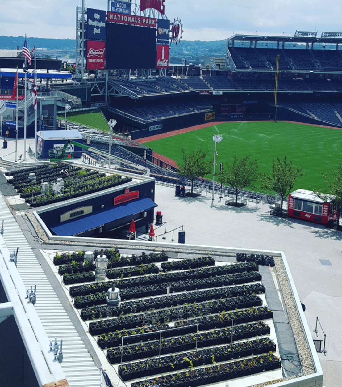 Image of the National's Park Rooftop Garden in 2016. Stay tuned for news about our plans for the 2018 season!