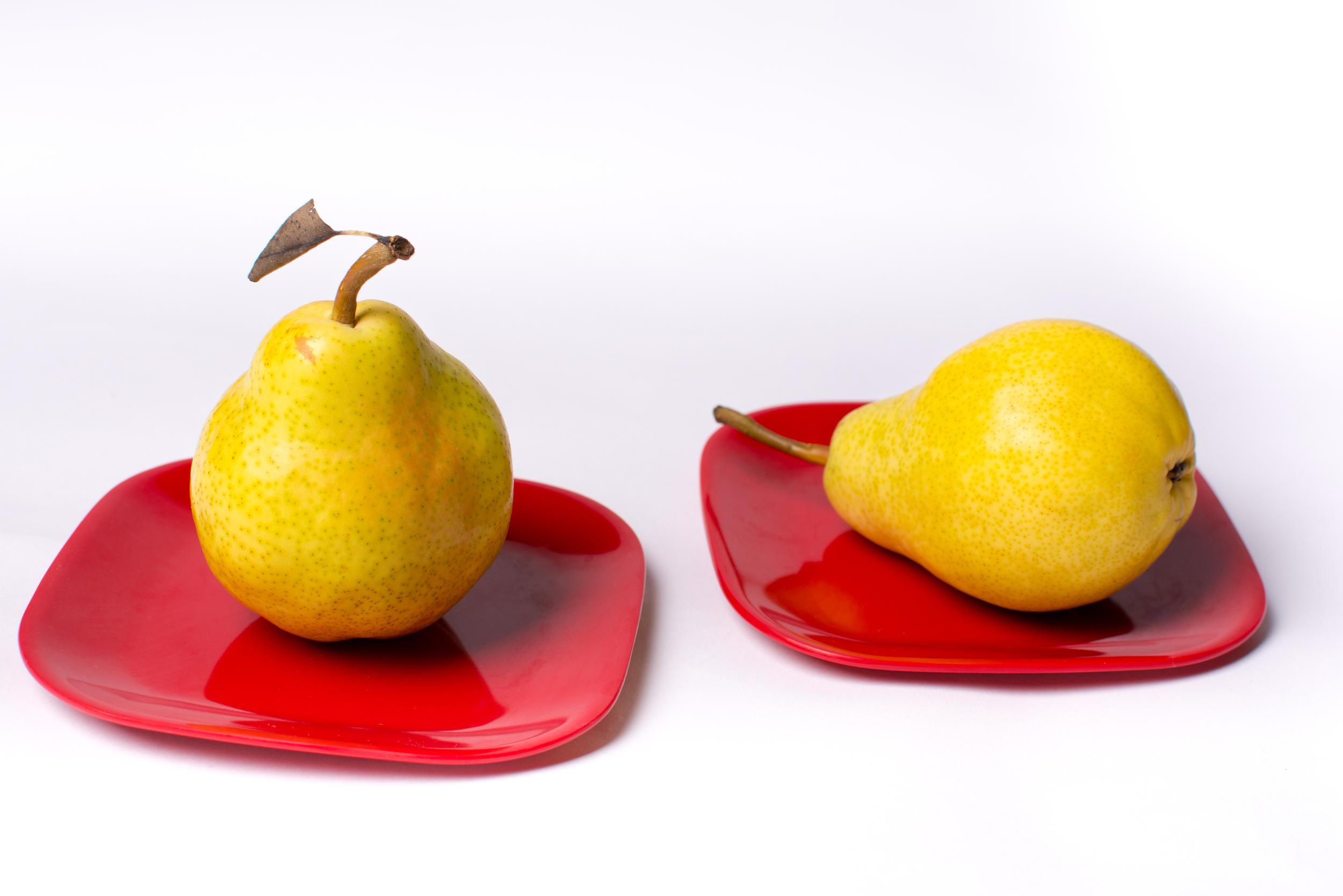Pair of Pears-15.jpg