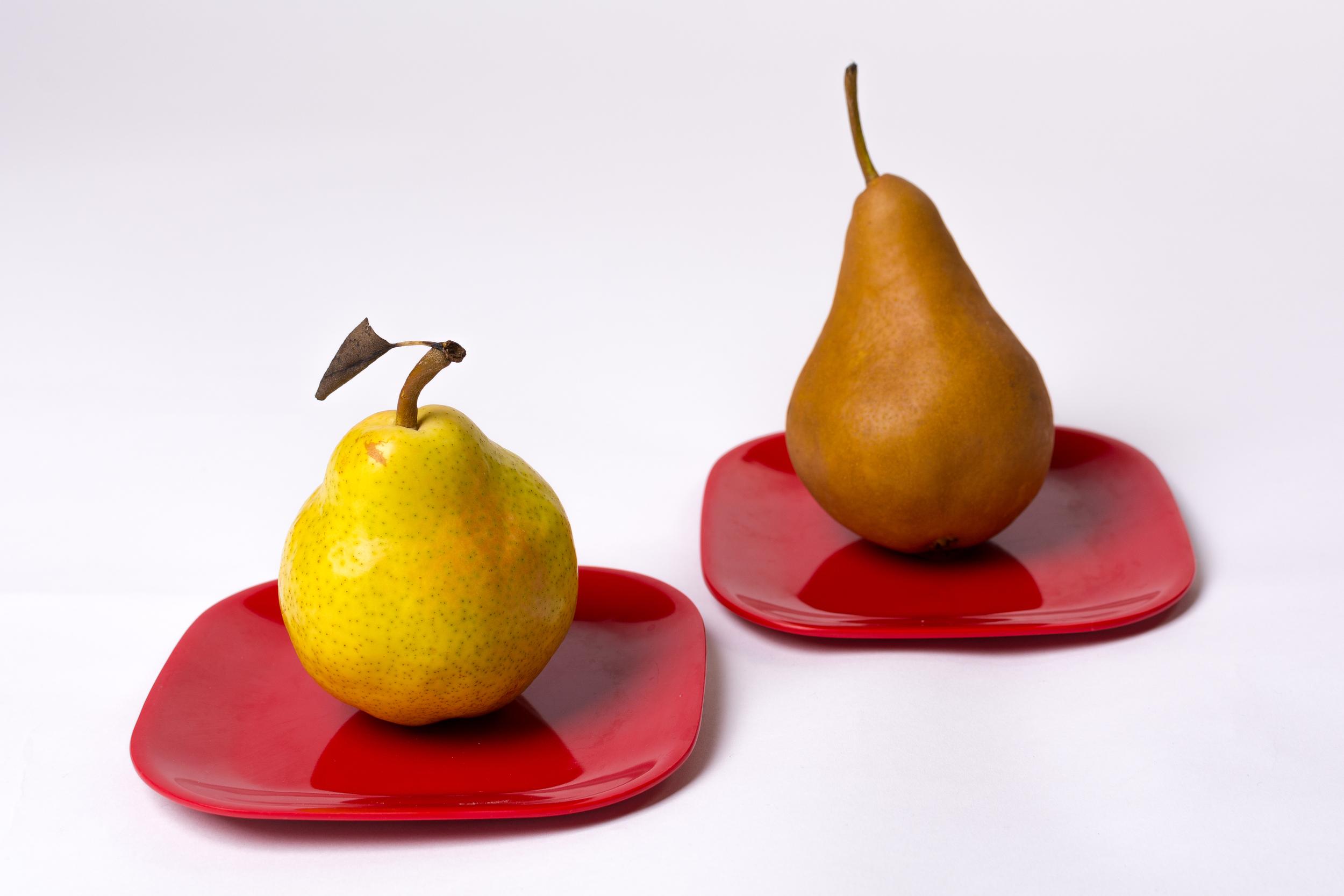 Pair of Pears-24.jpg