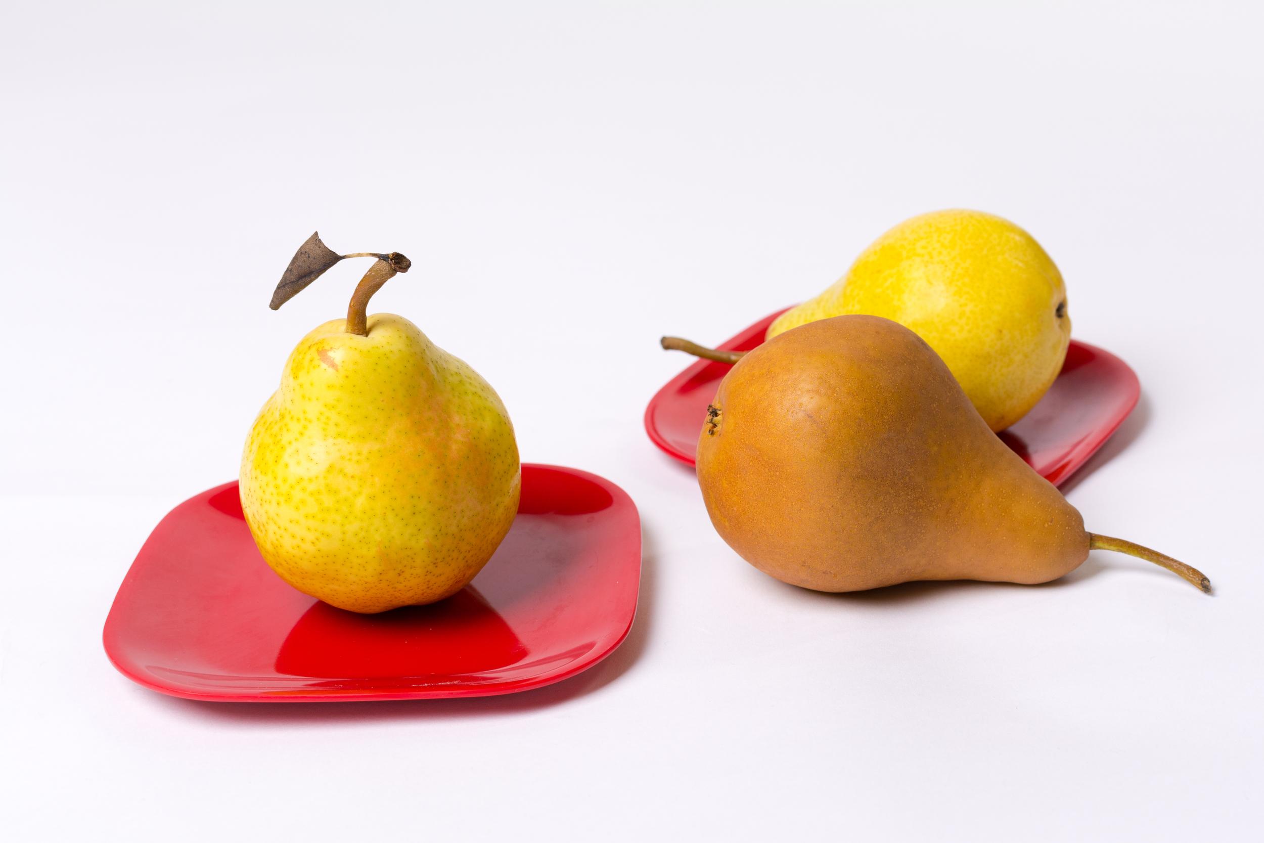 Pair of Pears-23.jpg