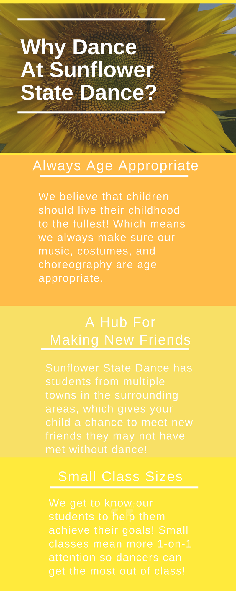 Why Dance At Sunflower State Dance-2.png