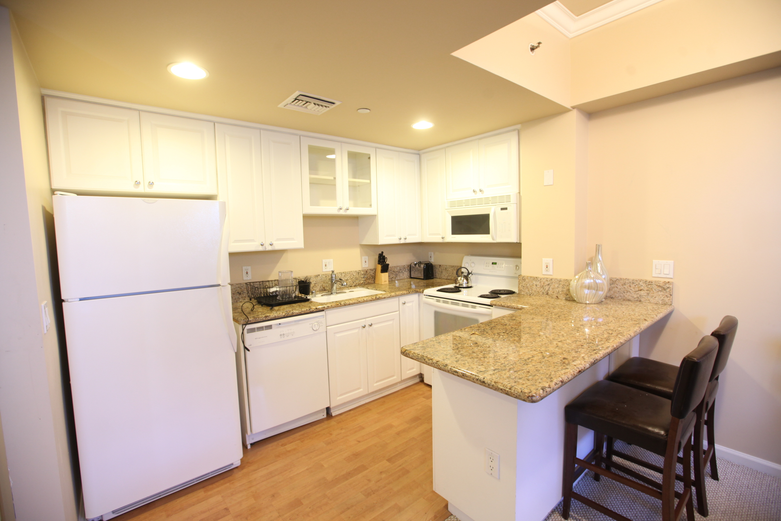 Unit 320 Kitchen