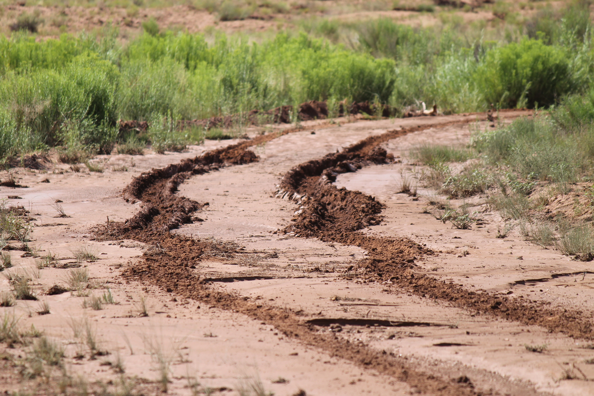 Recent rain left dense, sticky mud!