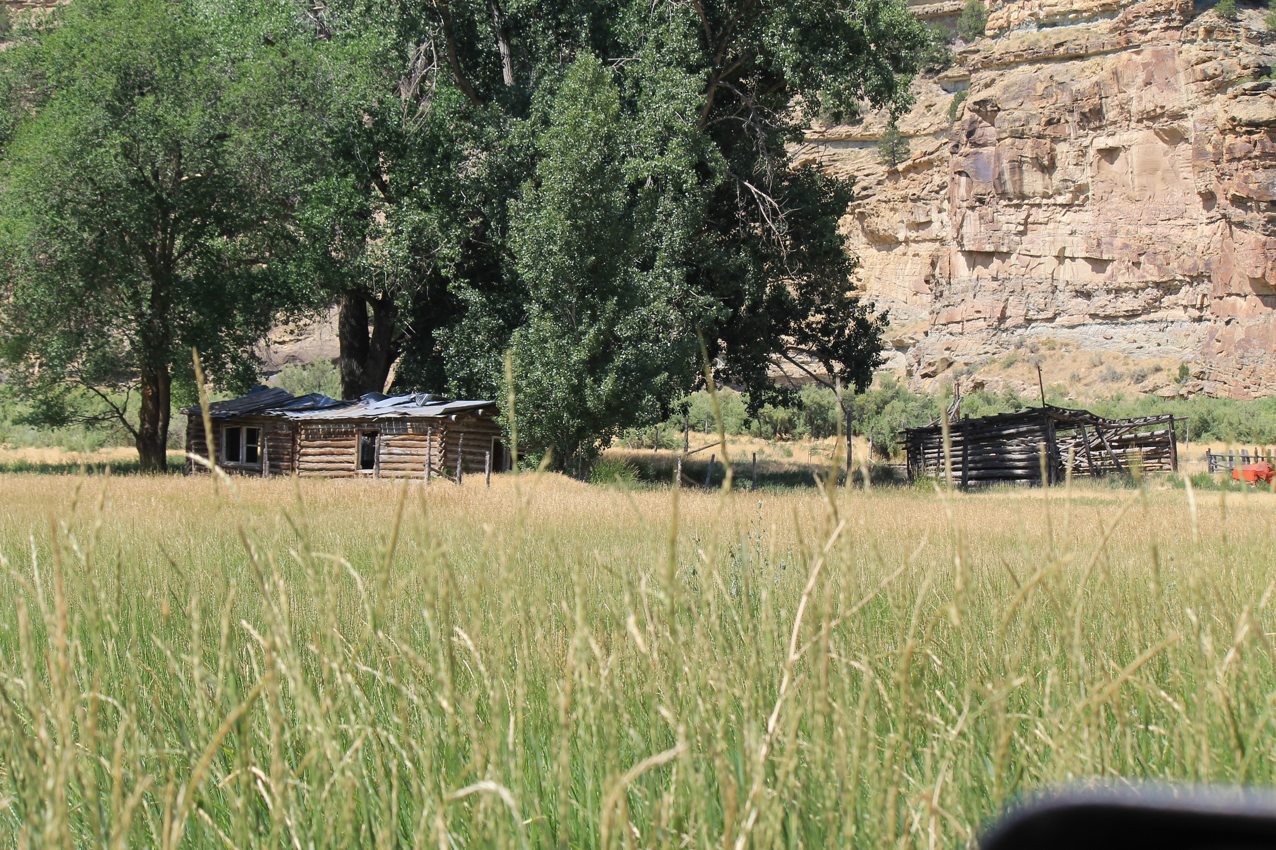 Old homestead in Willow Creek Canyon