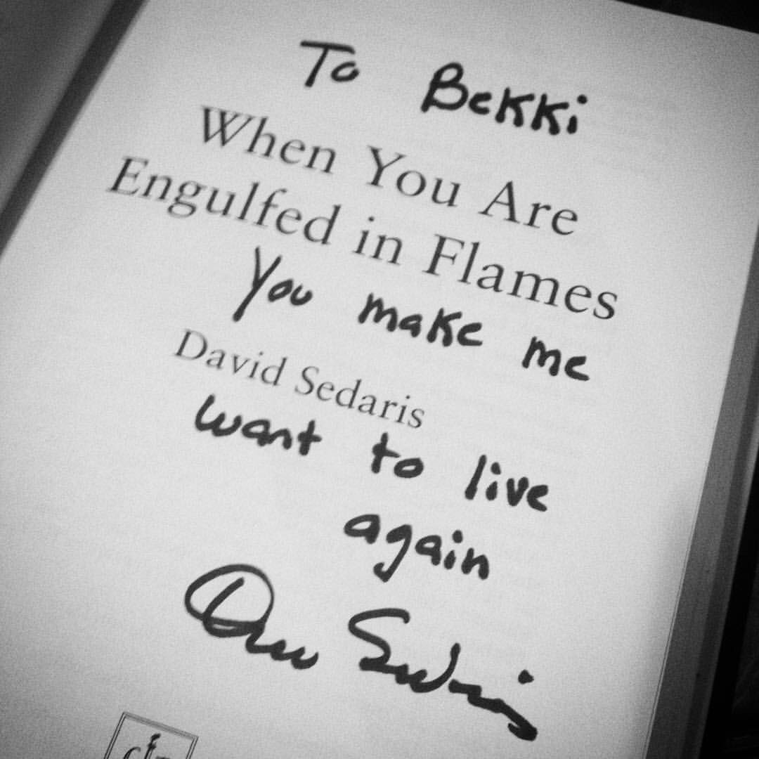 David is the best. Photograph of Bekki's book, by Bekki Vaden Ottinger.
