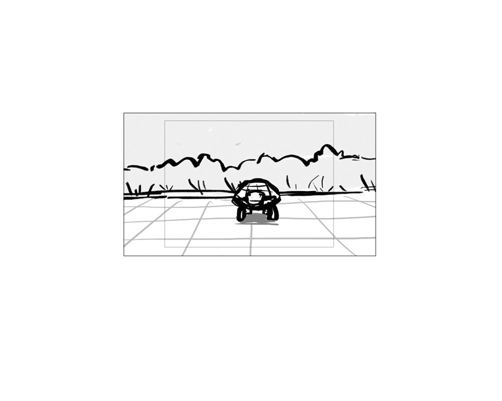 turtle_27.jpg