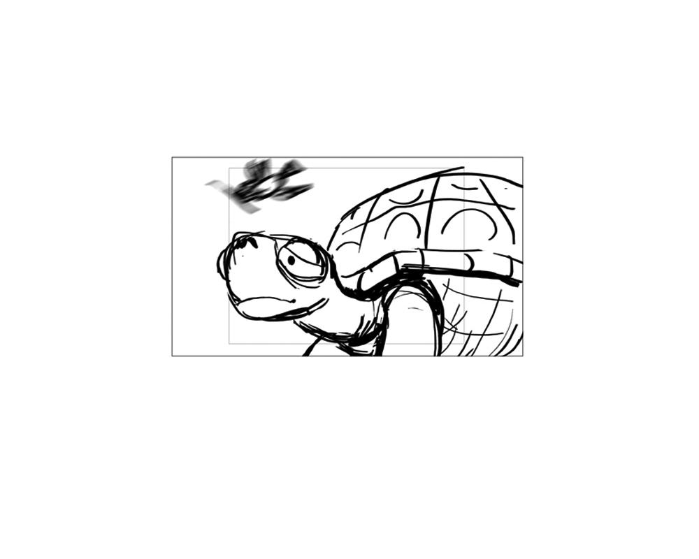 turtle_29.jpg