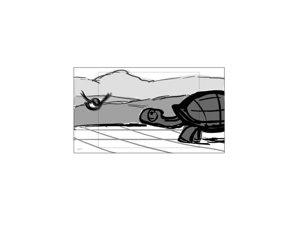 turtle_43.jpg
