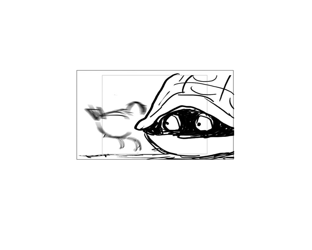 turtle_56.jpg