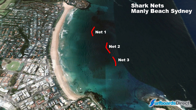 Shark Nets in Manly Beach, S