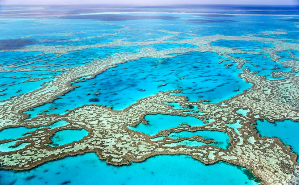 Australia_Queensland_Great_barrier_reef_006-2.jpg