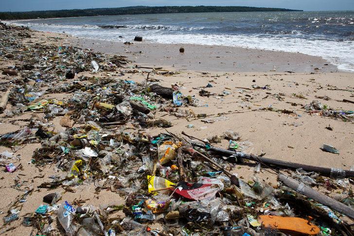 ocean-plastic-toxic-absorb.jpg