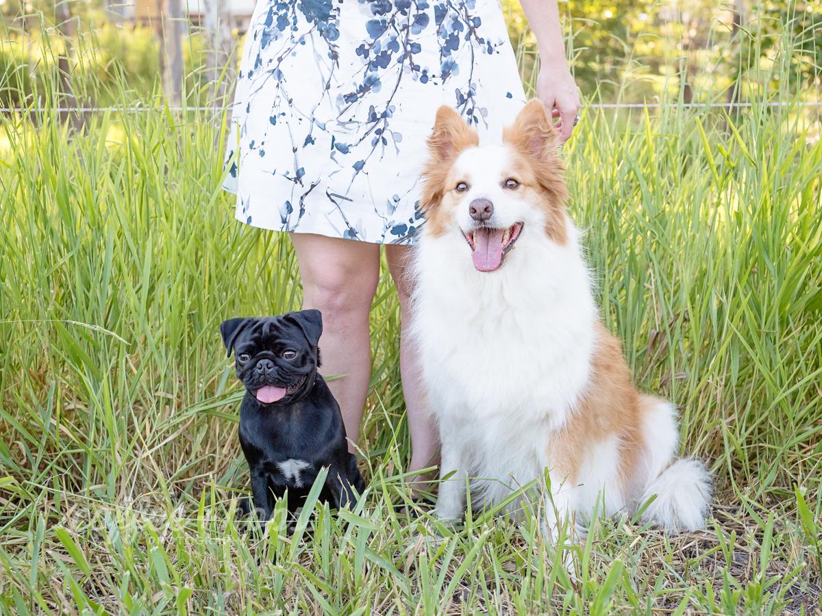 Baxter and Winston