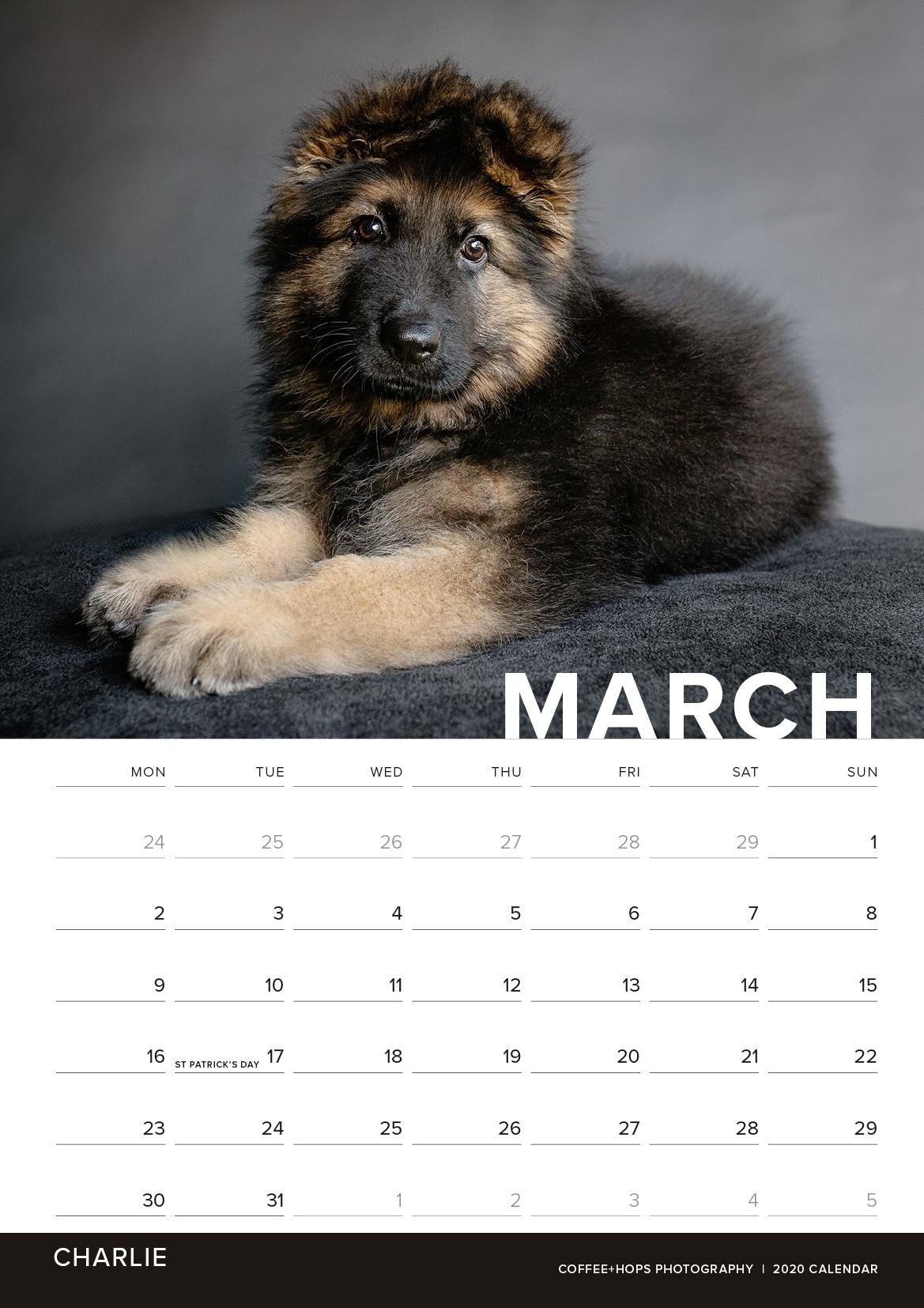 2020-calendar-internals3.jpg