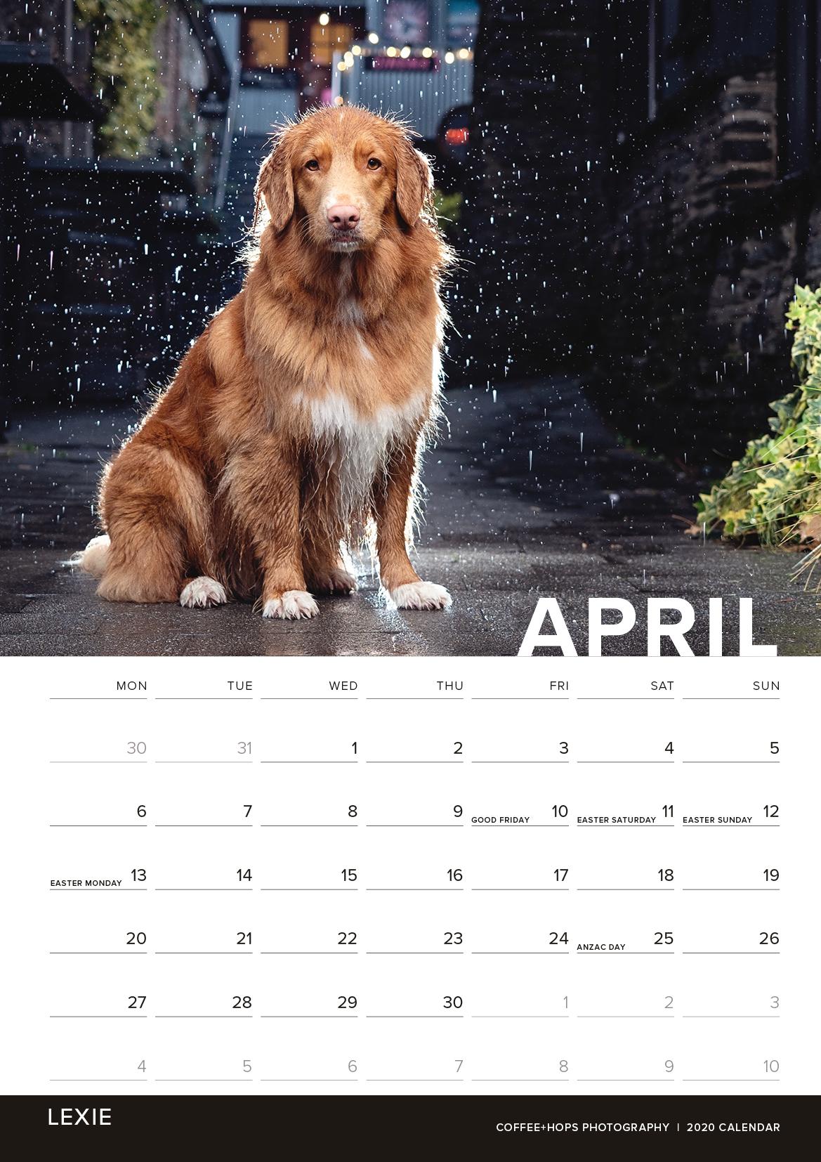 2020-calendar-internals4.jpg