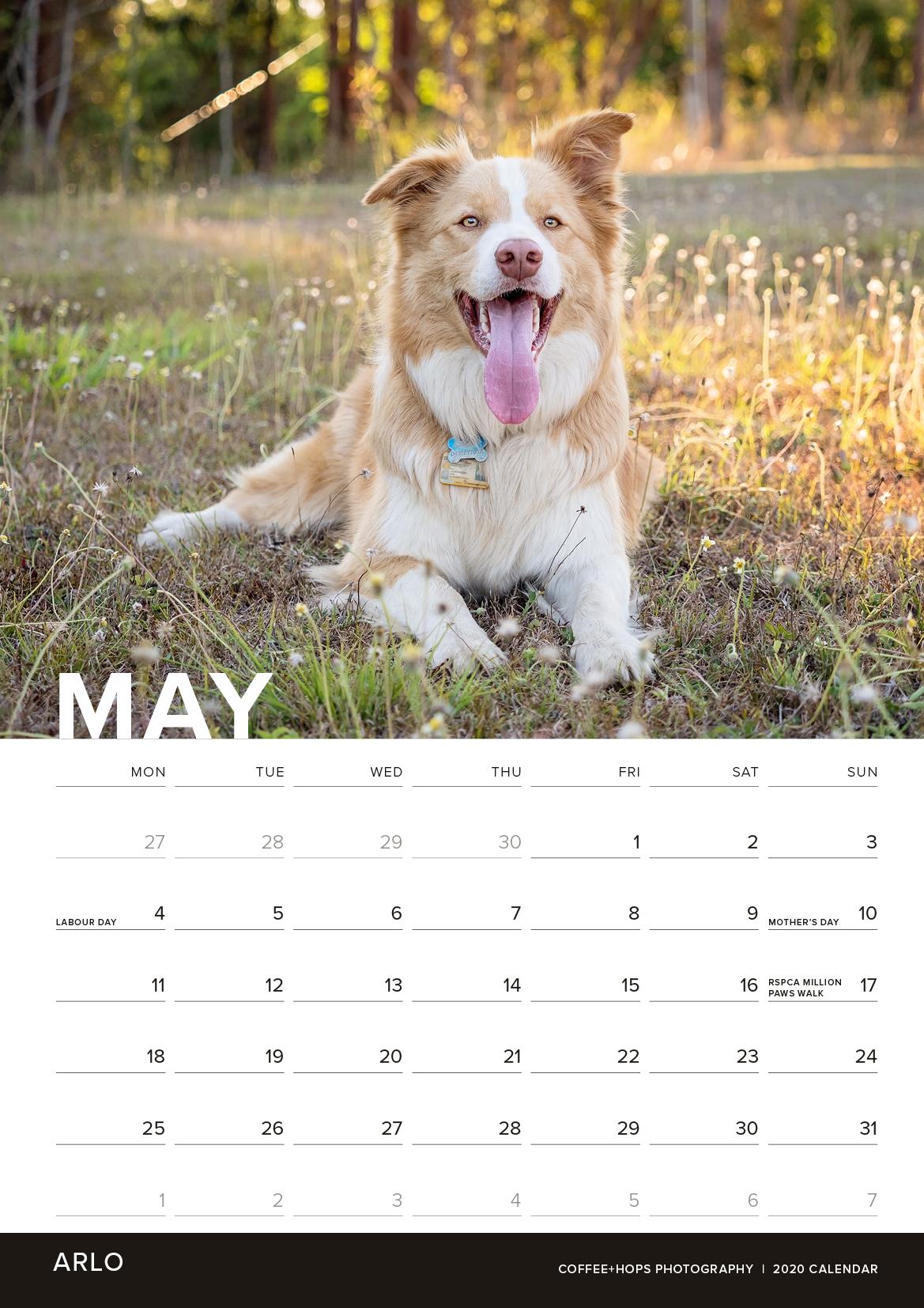 2020-calendar-internals5.jpg