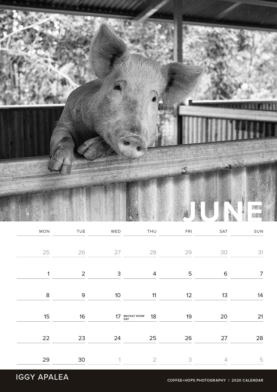 2020-calendar-internals6.jpg