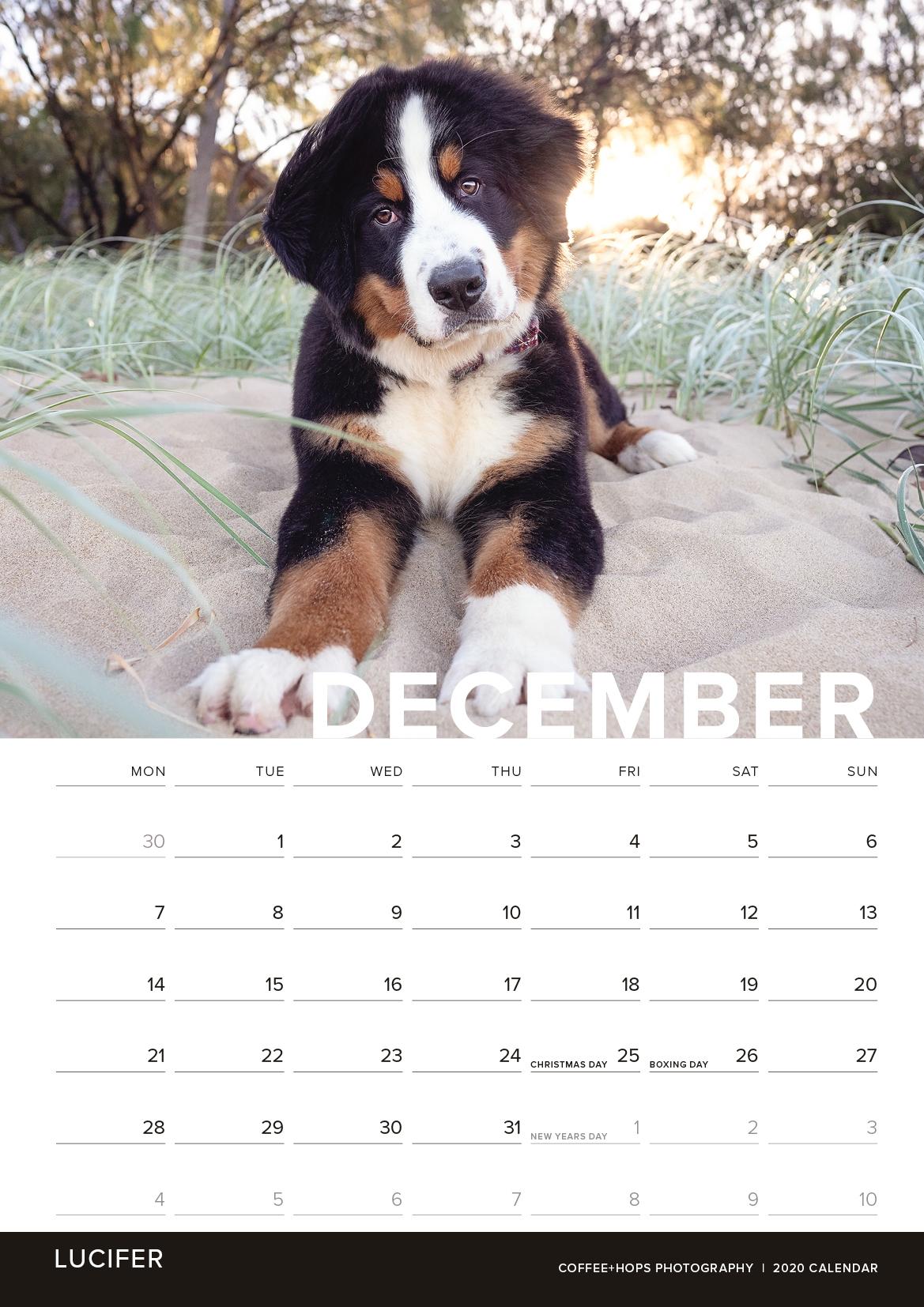 2020-calendar-internals12.jpg