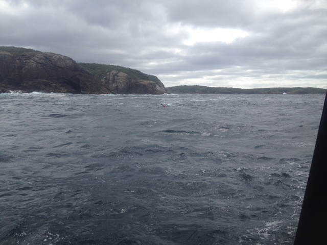 Picture of Red battling the waves, taken by Ian from the charter boat.