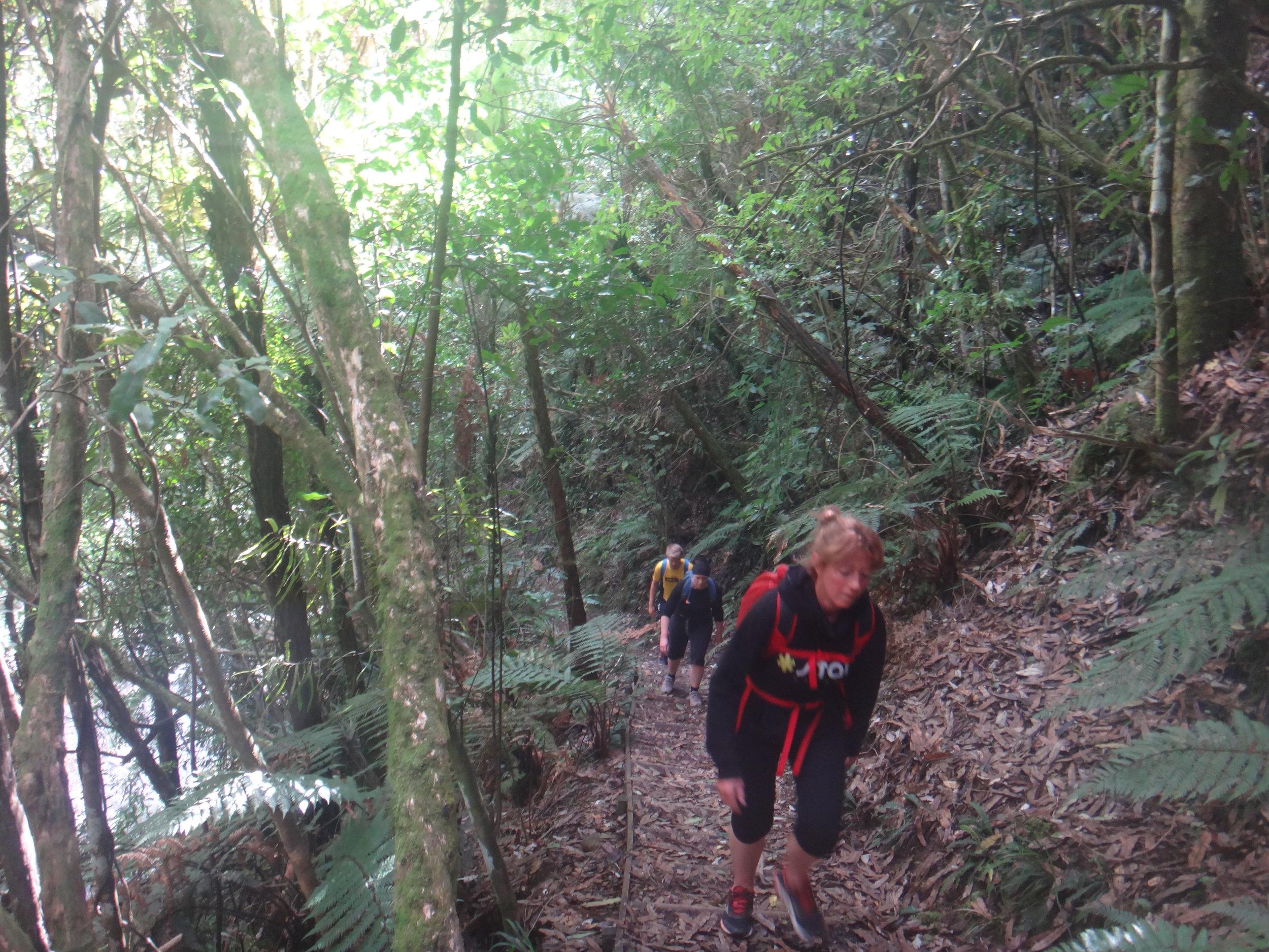 Hiking the Sledge Track.