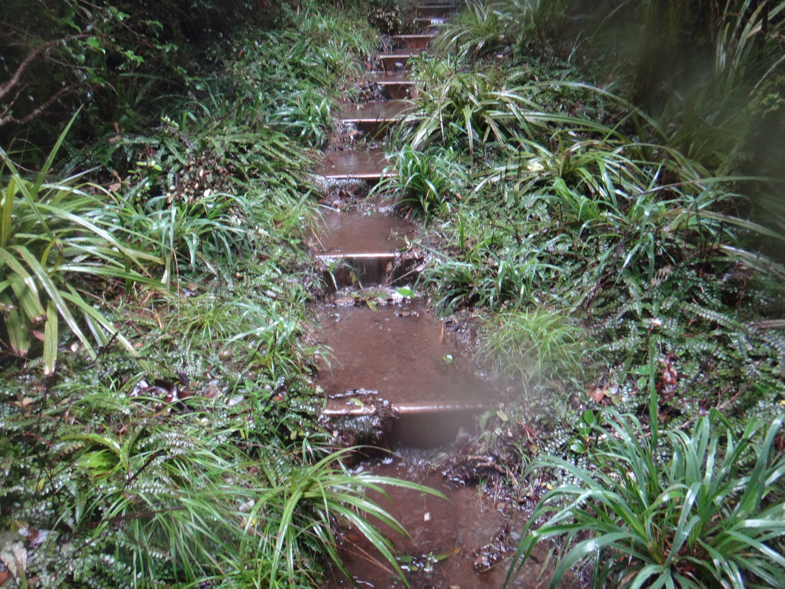 Watery stairs.
