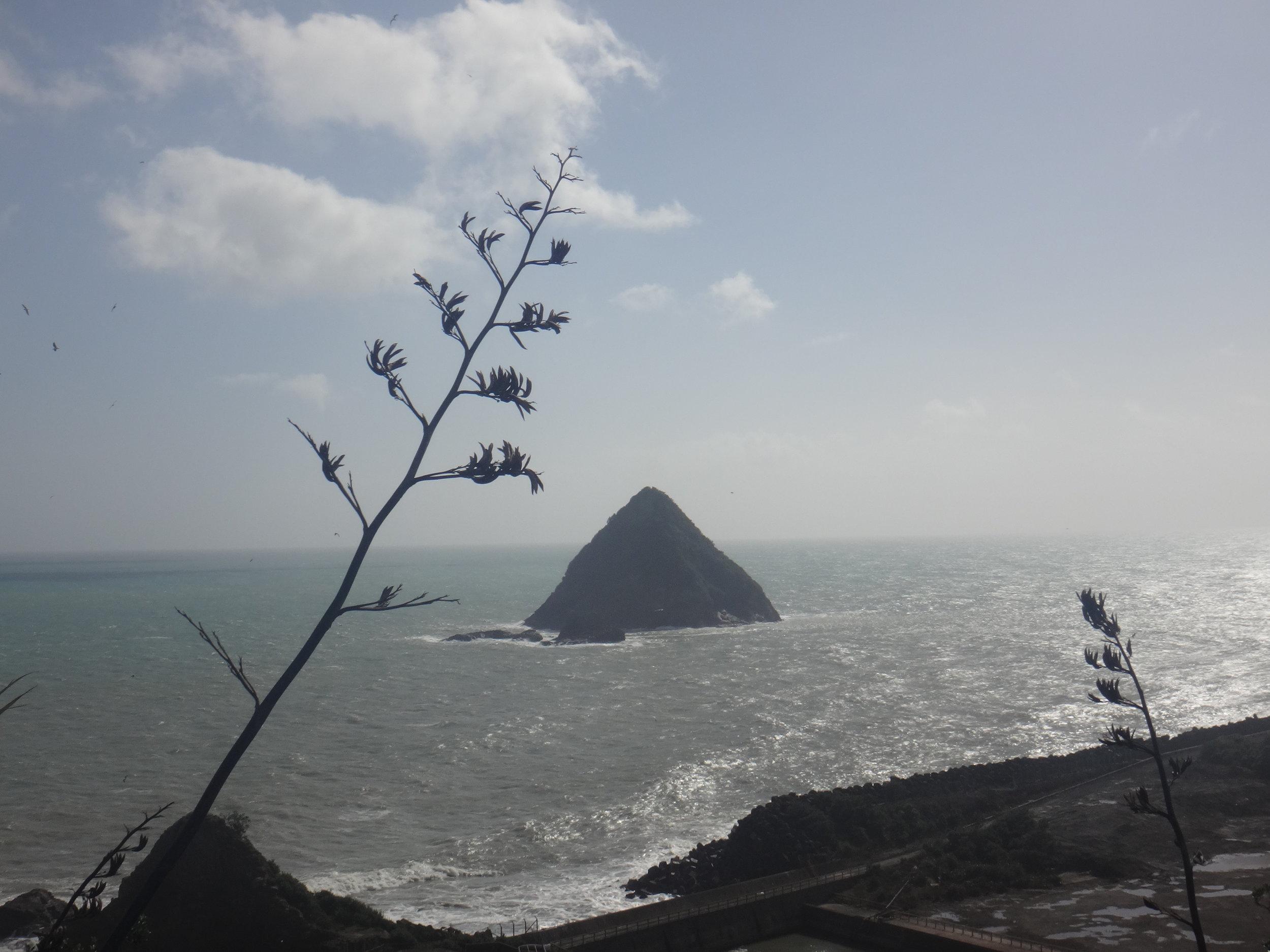 The ocean. Sugar Loaf Islands.