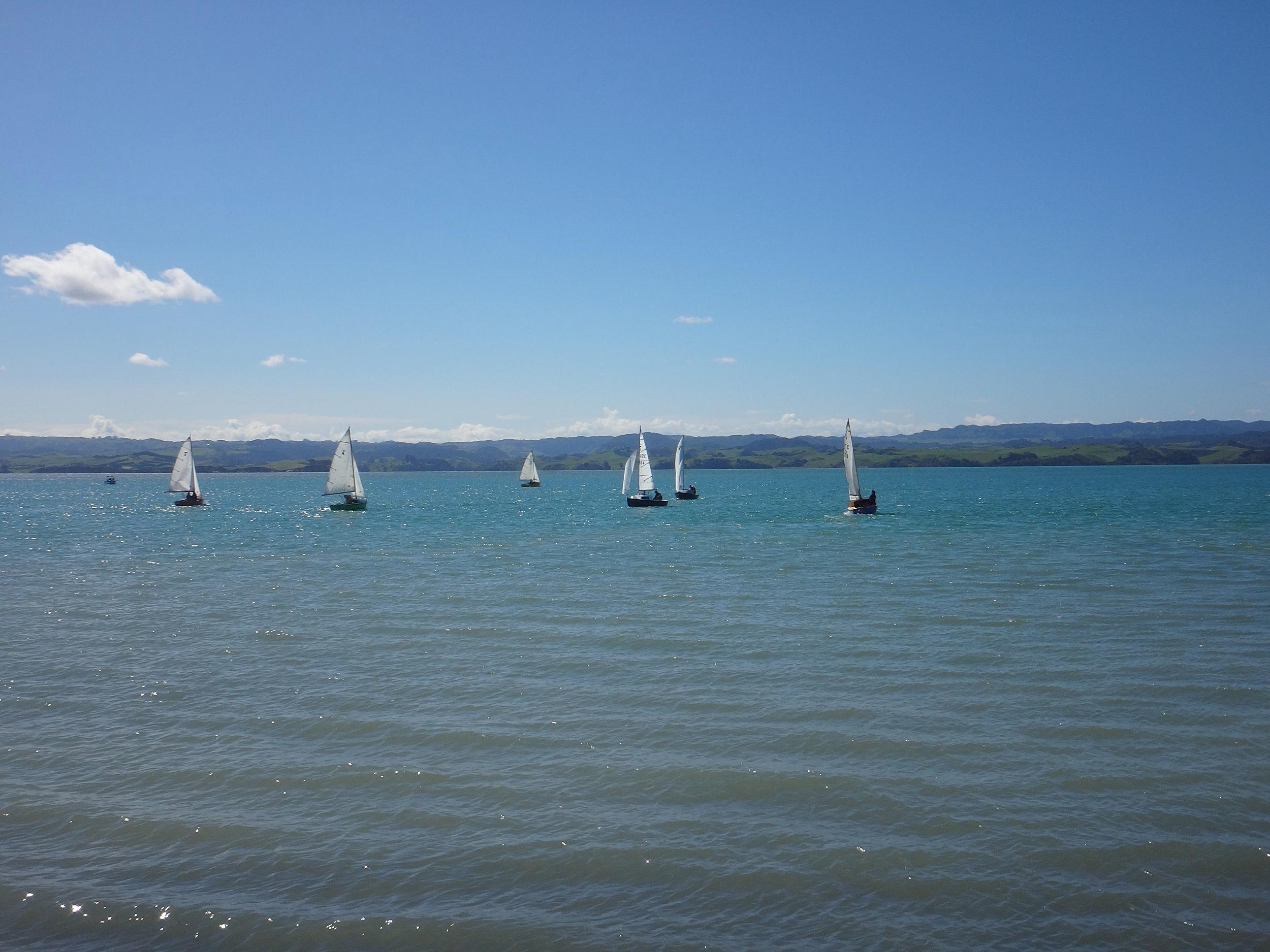 Kawhia Harbour Boat Racing