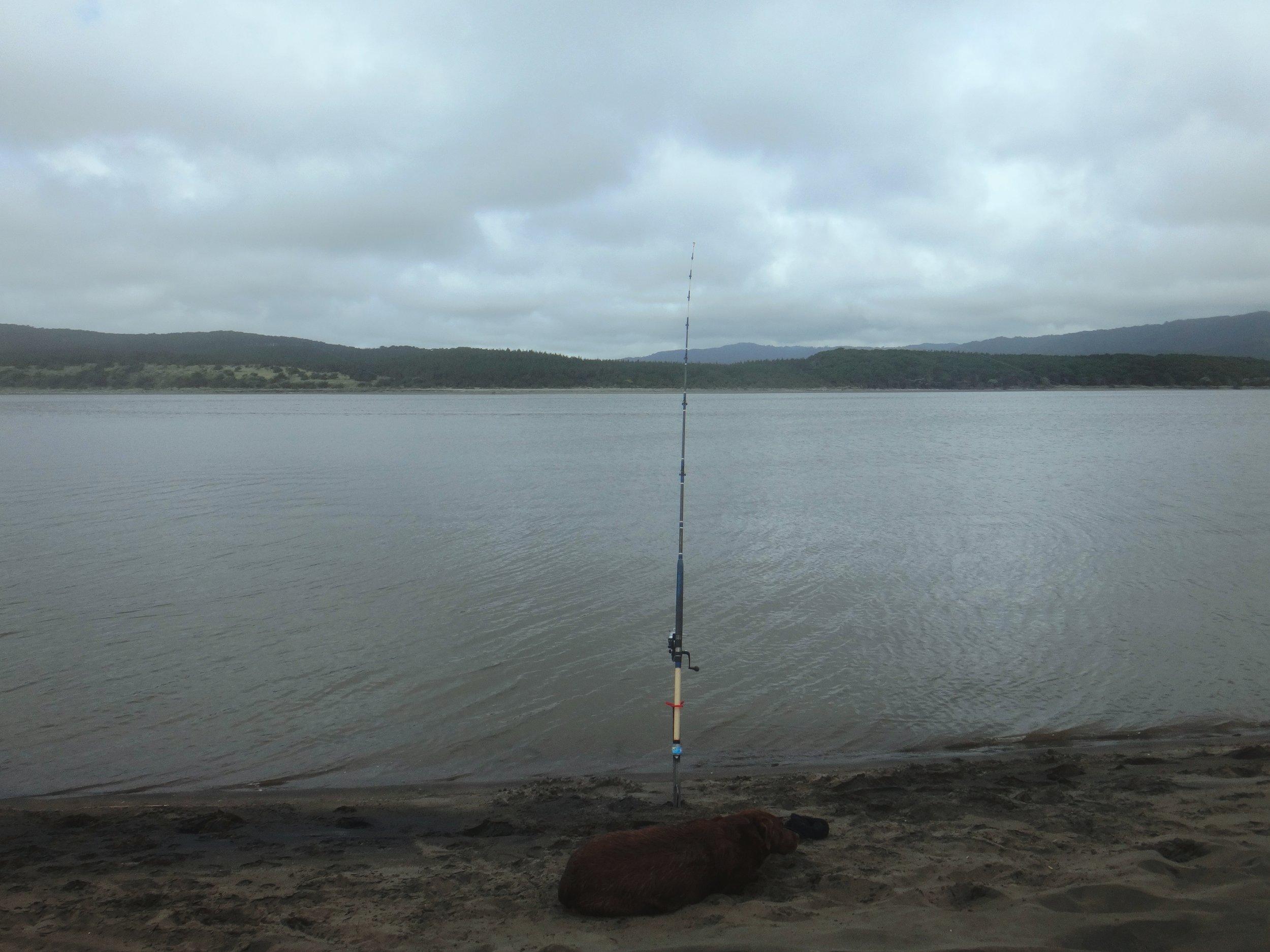 Fishing, Port Waikato style.