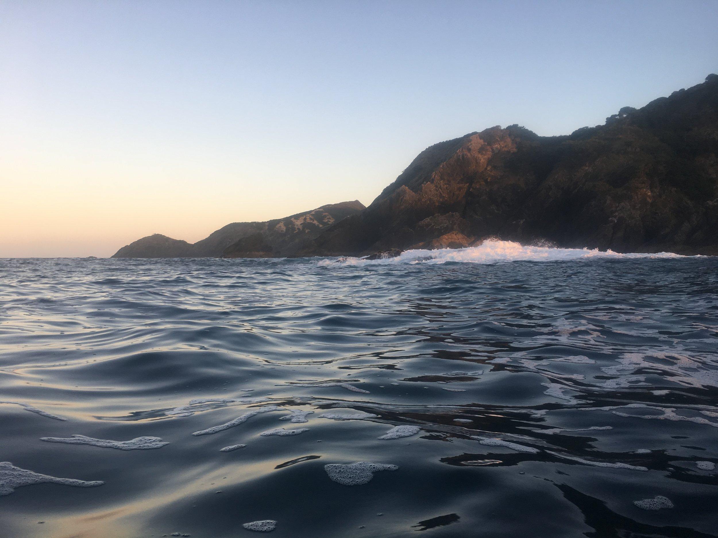 Waikato Bay relaxing.