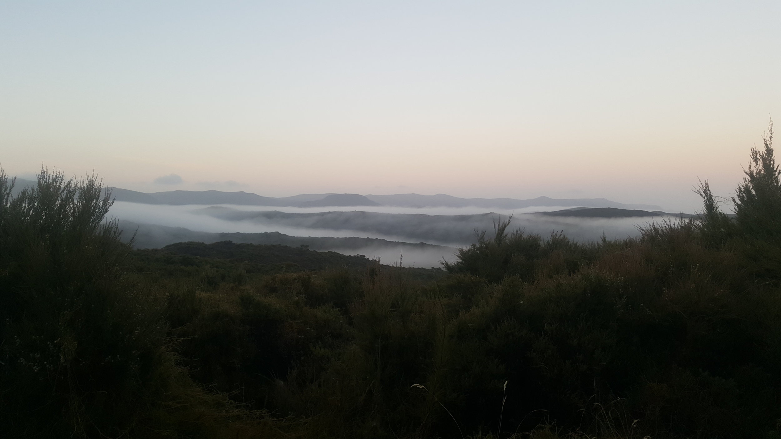 Aoteoroa. The land of the long white cloud.