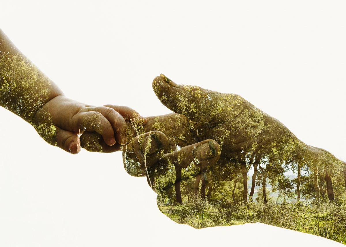 Grandfather-Grandchild-Cork-Tree-Forest.jpg