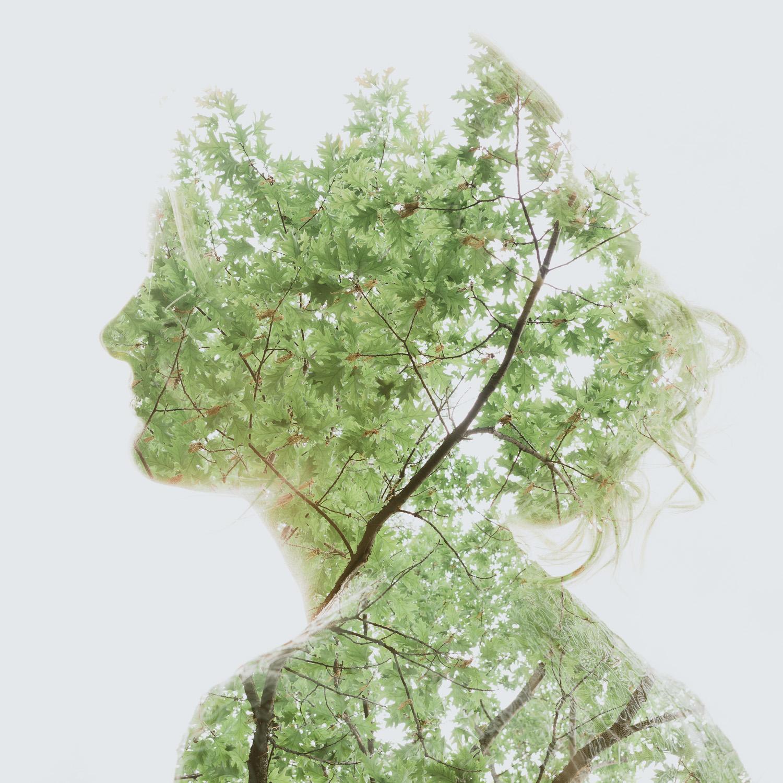 Summer Green.jpg
