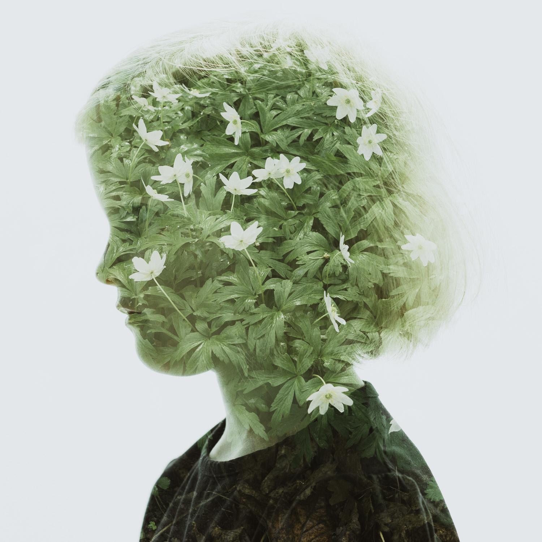 Windflower Child.jpg