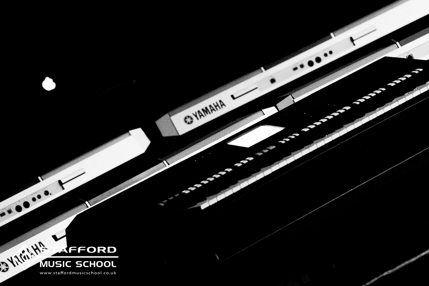 StaffordMS-9750.jpg