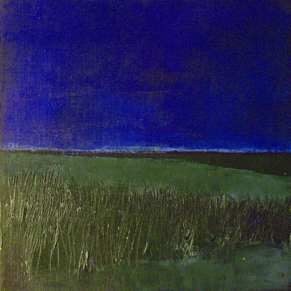 Marsh Nocturne 3