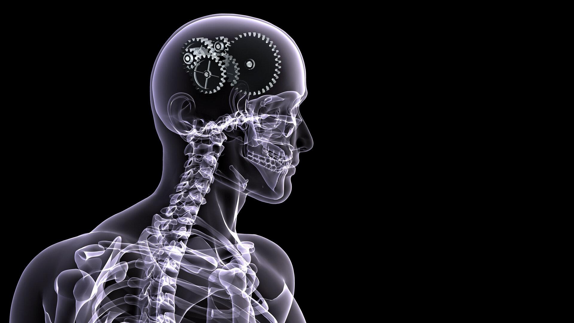 Skull X Ray Logo.jpg