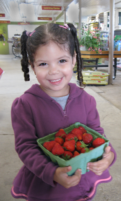 Berries of all kinds grow well in the Rondout Valley climate