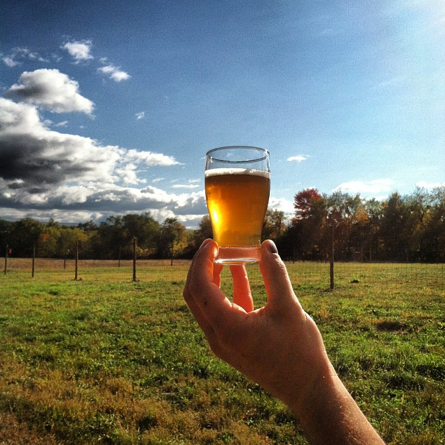farm-grown hops are used in arrowood farms farm brewery's beer