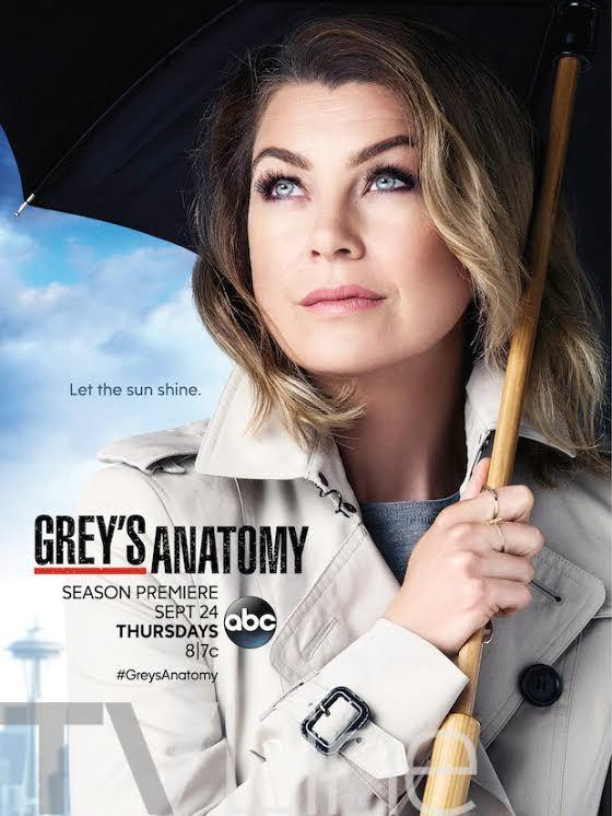 greys+season+12+poster.jpg