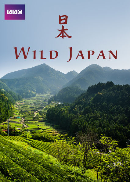 Wild japan  - Whenever I feel anxious or particularly worked up then I like to watch a documentary on nature. Seeing how huge the world is, really helps me control my thoughts and also reminds me that I'm only one tiny human and not everything revolves around me. Anyway, Wild Japan shares everything about the wild animals in that part of the world and it was fascinating to learn what typically resides there. Not only does it cover the animals but how the humans and the animals live together in harmony. My favourite episode has to be the one about the deer and monkey island, fascinating!