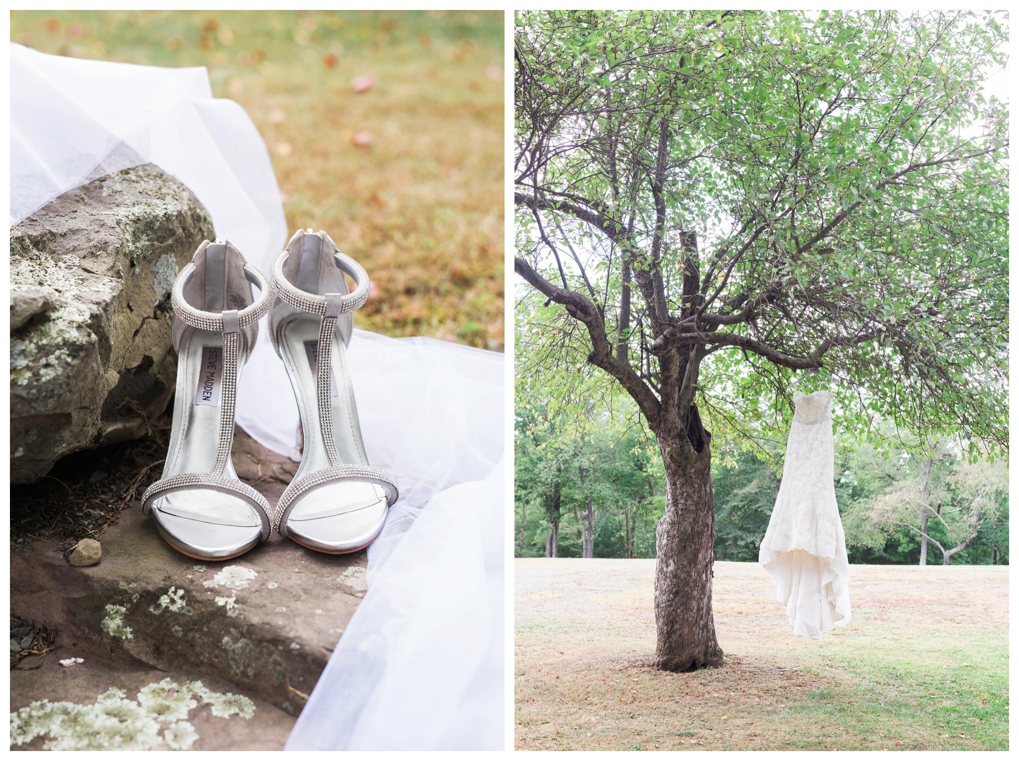 lodge-at-mountain-springs-lake-wedding_0002.jpg