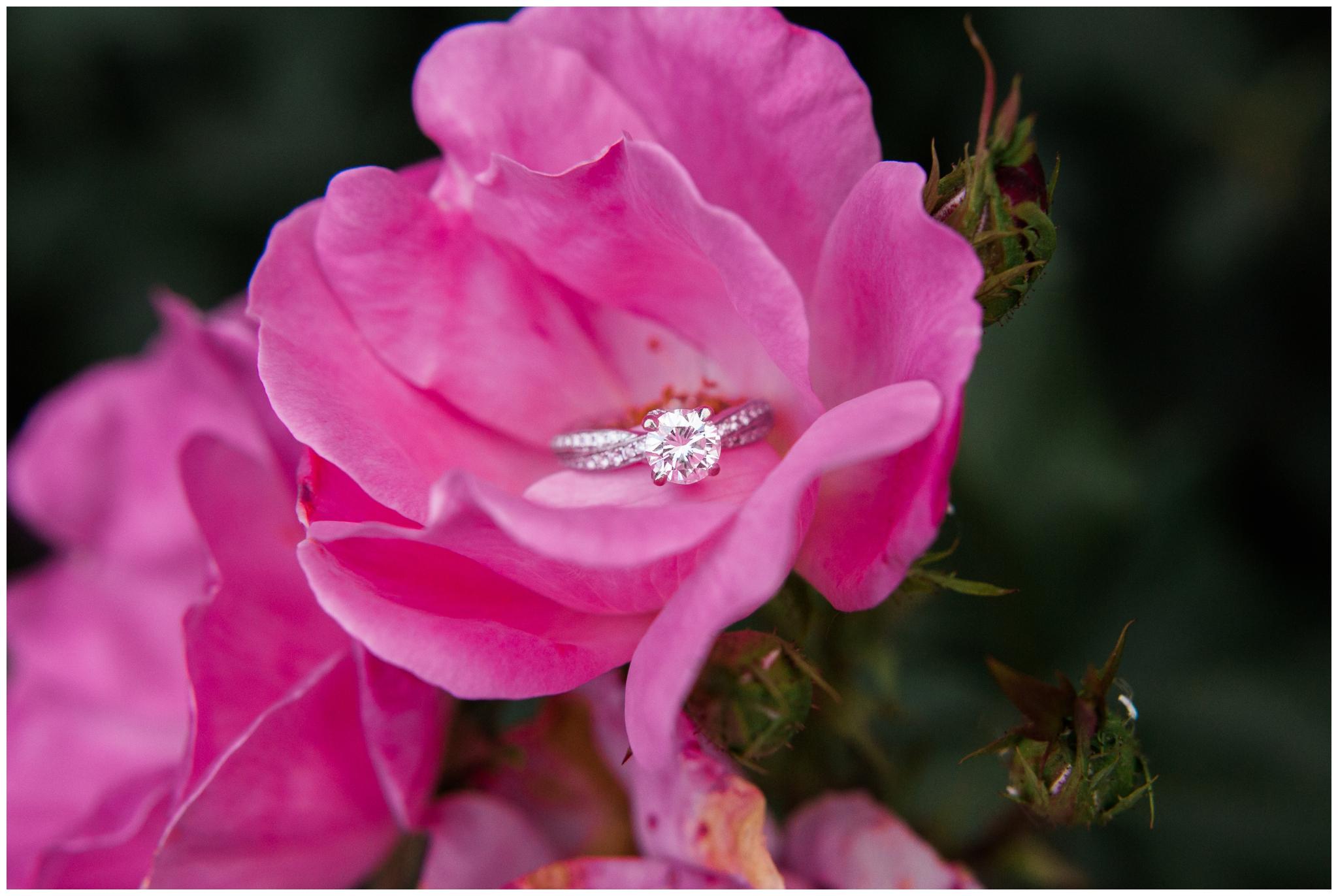 frederick-maryland-wedding-photographer-outdoor-engagement_0017.jpg